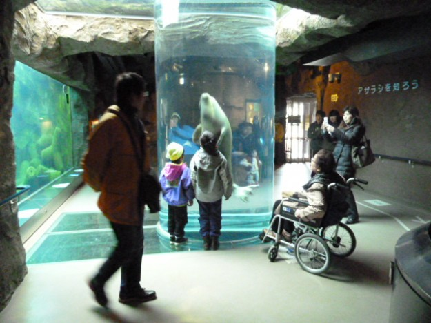 旭山動物園へのアクセスは超簡単!空港から直通バスでGO!