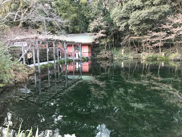 湧玉池。富士の清水をすくって奥のお社にもお参り。