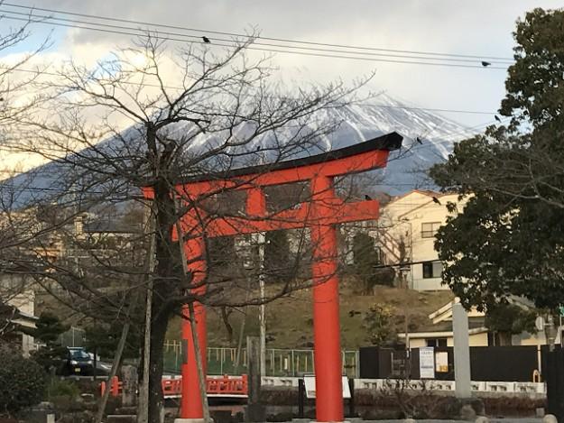 富士山本宮浅間大社へ初詣。湧玉池のパワーに今年のご利益を祈ろう