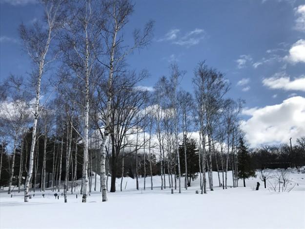 北海道の冬、素敵な青と白のコントラスト
