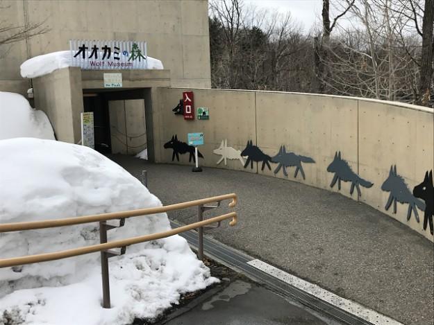 旭山動物園 オオカミの森 絵本「あらしのよるに」の作家 あべひろしさんはもと職員
