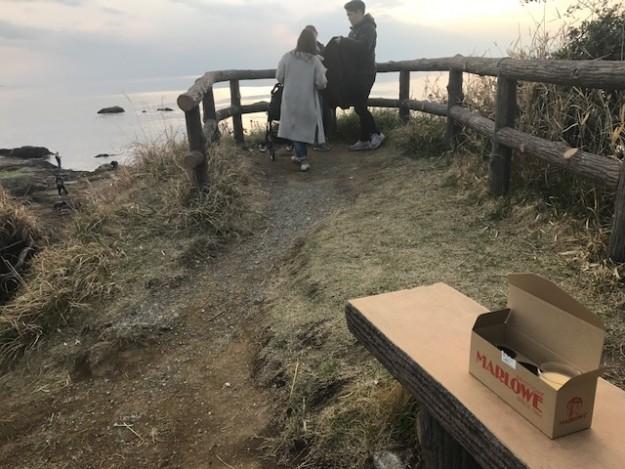 マーロウ秋谷本店の目の前は立石公園。こんな絶景が望めます。