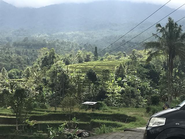 遥か彼方まで続く、田園、棚田の風景。ジャティルイ