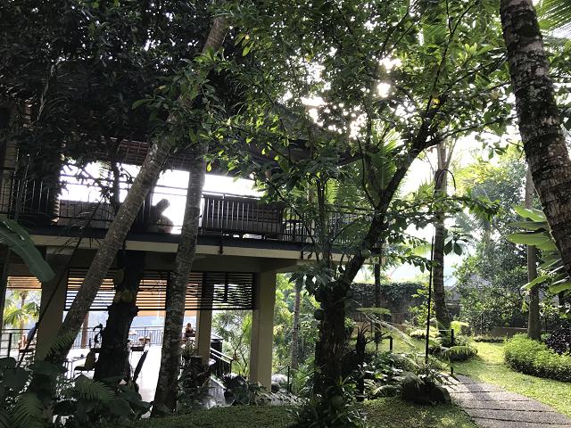 コマネカ・アット・タンガユダのホテルの庭。というよりも森林のなかに包まれていると言った感じ。