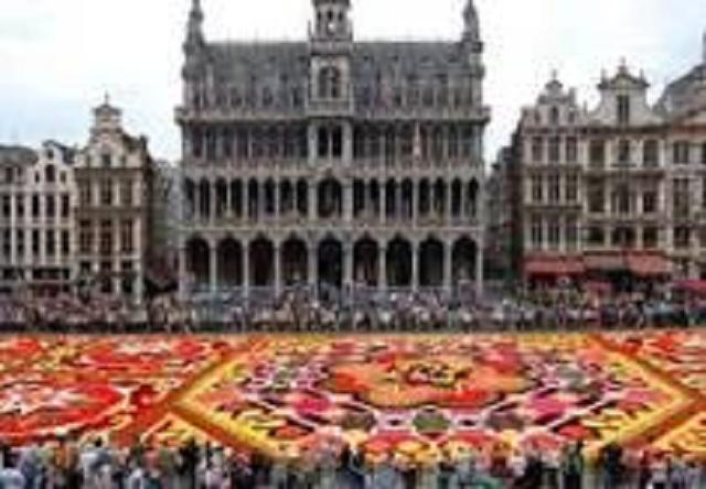この花は本物の花がノリで固定されて3日間くらい鑑賞できる。世界一美しい広場のリアル花の絨毯。見れた人はラッキーです。