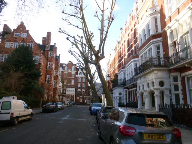 この通りを逆側からみるとこんな感じです。コンドミニアムは右側の一角。