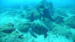 PADIオープンウォーター挑戦記!サイパンの美しい海でダイビング!(前半)