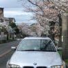 こんな時期だから!鎌倉~逗子ハイランド・披露山公園へのお花見ドライブ
